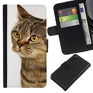 eJoy---La carpeta del tirón la caja de cuero de alta calidad de la PU Caso protector - Sony Xperia Z3 D6603 - --American Shorthair Orange Wirehair Cat