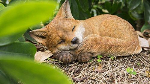Hi- Line Gift 87719-D Fox Pup Sleeping Statue (Fox Yard Statue)