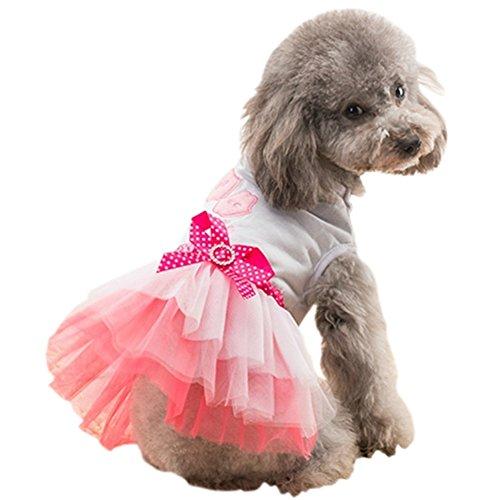 CHBORLESS Cute Pet Dog Dresses Pet Clothes Bowknot Lace Dress Princess Dress Teddy Dog Clothes (M(Body 11.81