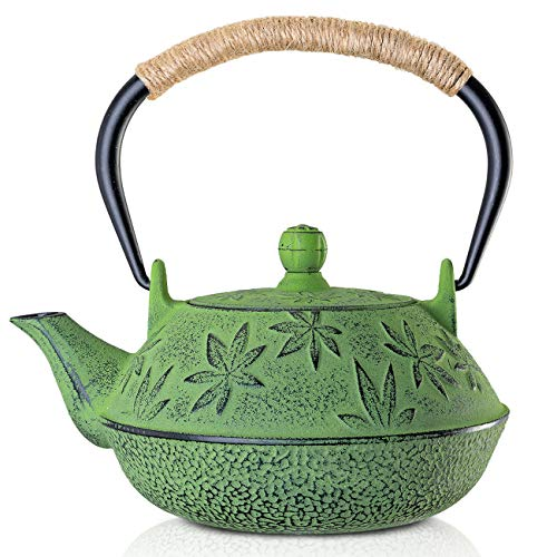 Cast Iron Teapot Sotya