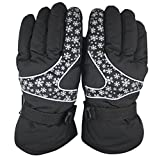 Dreamyth Men Women -30℃ Winter Warm Ski Gloves Waterproof Windproof Snowboard Head Sports Gloves Durable (Black)