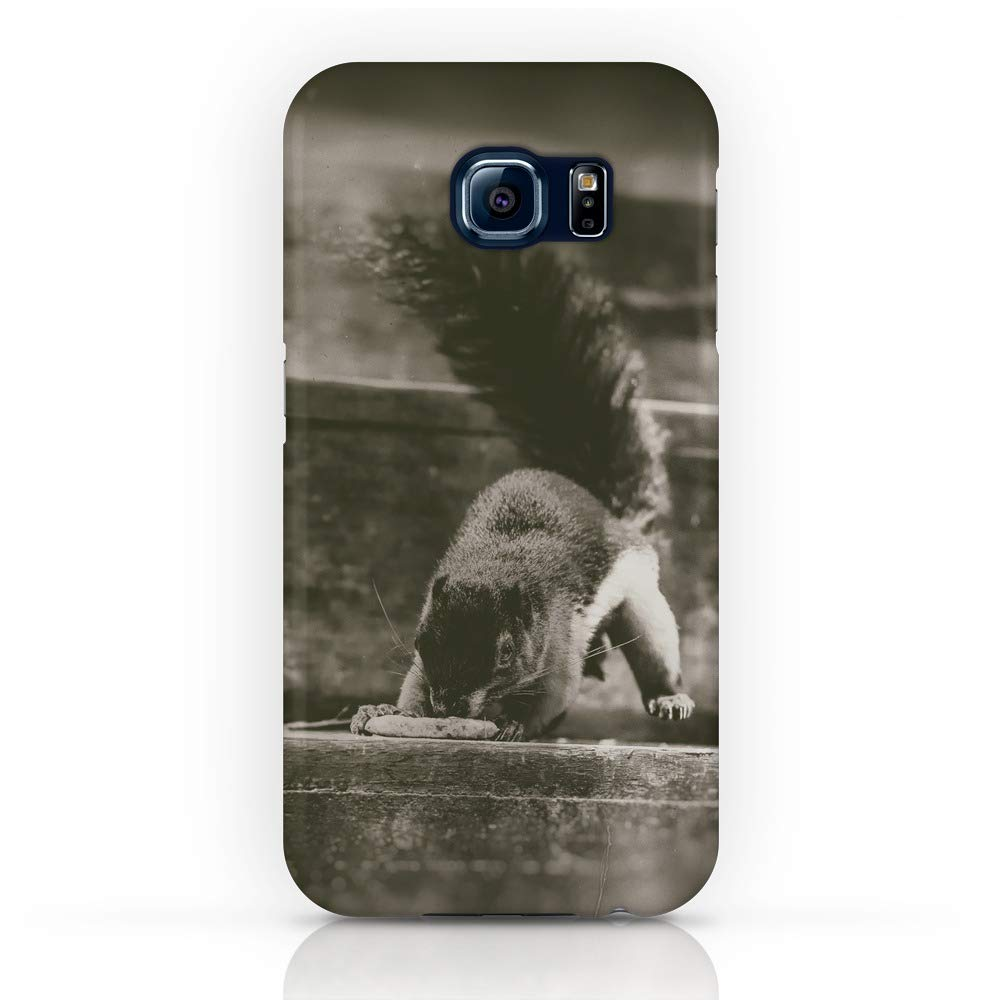 new arrival 39e59 4474d Amazon.com: Society6 iPhone X Cases, Featuring Squirrel in Action by ...