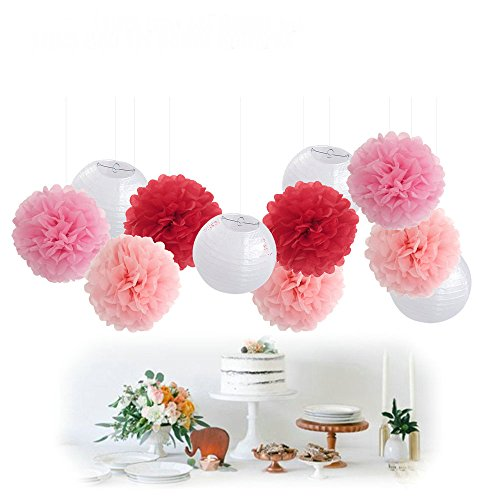 11pcs Mixed Pink White Decorative Paper Pompoms Flower Hanging Paper Lantern Honeycomb Balls Wedding Birthday Christening Girl Baby Shower Nursery (Hanging Paper Mobile)