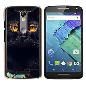 All Phone Most Case / Oferta Especial Duro Teléfono Inteligente PC Cáscara Funda Cubierta de proteccion Caso / Hard Case Motorola Moto X3 3rd // Black Cat Feline Orange Bombay Chartreux