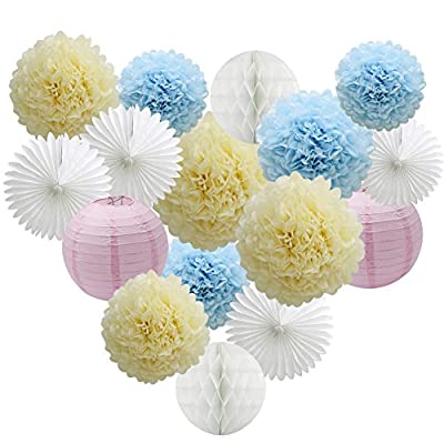 Pack of 16 Paper Crafts Tissue Honeycomb Balls Lanterns Paper Pom Poms Flowers Hanging Fan for Room Wedding Baby Shower Birthday Party Decoration