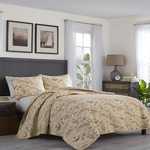 Tommy Bahama Map Quilt Set, Queen, Khaki