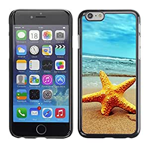 Paccase / SLIM PC / Aliminium Casa Carcasa Funda Case Cover - Beach Starfish - Apple Iphone 6 Plus 5.5