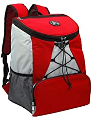 Large Padded Backpack Cooler - Fully Insulated, Leak and Water Resistant, Adjustable Shoulder Straps, Extra Storage...