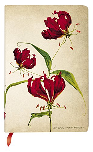 (Gloriosa Lily Journal: Lined Mini (Painted Botanicals))