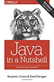img - for Java in a Nutshell: A Desktop Quick Reference book / textbook / text book