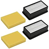 2 Pack Pre-Motor Foam Filter and Post-Motor Filter for Bissell...