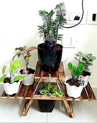(FAZZILET ®) Plant Stand/Coffee Table Cum Side Table for Living Room Kids Furniture Outdoor Table (Planter Stand, 66 x 28 x 23 cm)