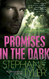 Promises in the Dark: A Shadow Force Novel (A Shadow Force Novella Book 2)