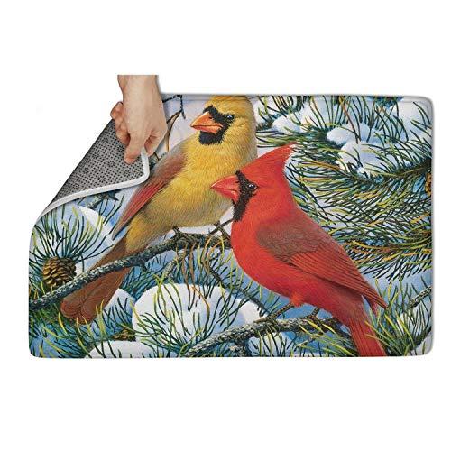 (TAMBC Bird Couple Cardinals Bath Mats for Shower Outdoor Door Mat 15.5