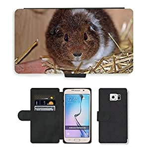 PU LEATHER case coque housse smartphone Flip bag Cover protection // M00135124 Guinea Pig Josie Pet jóvenes Bebés // Samsung Galaxy S6 (Not Fits S6 EDGE)