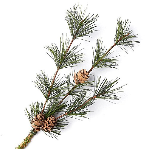 Factory Direct Craft Artificial Pine Sprays with Pinecone Accents for Holiday Decorating - 6 Sprays ()