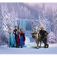 Frozen Window Curtain - Characters, Anna, Kristoff, Elsa, Hans, Olaf, Sven (71 x 63 inches)