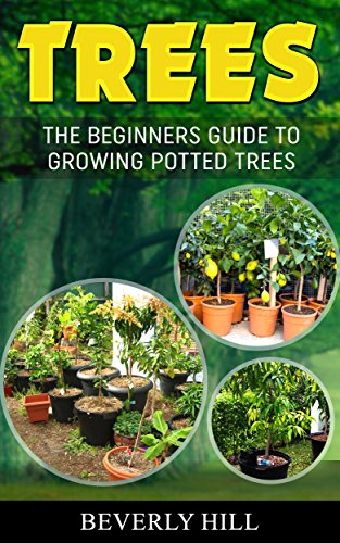 TREES: THE BEGINNERS GUIDE TO GROWING POTTED TREES (Tree, tree topper, tree skirt, tree willow, tree growing, tree growing kit, tree growing book) by [Hill, Beverly]