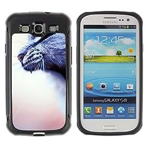 Suave TPU Caso Carcasa de Caucho Funda para Samsung Galaxy S3 I9300 / yawn roar cat grey house blurry peach / STRONG
