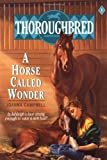 Front cover for the book A Horse Called Wonder by Joanna Campbell