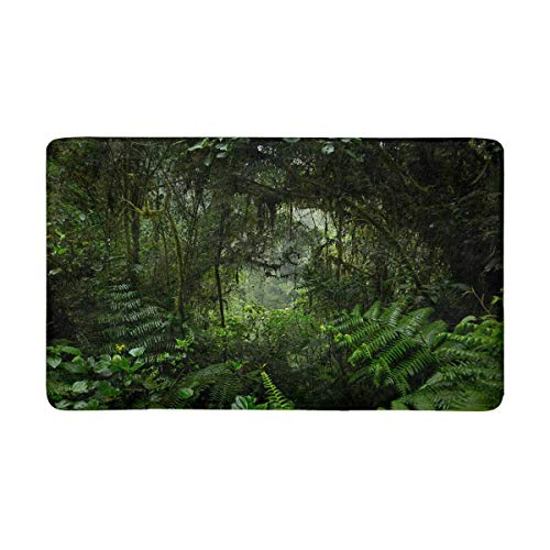InterestPrint Jungle Tropical Rainforest Doormat Non Slip Indoor/Outdoor Floor Door Mat Home Decor, Entrance Rug Rubber Backing Large 30