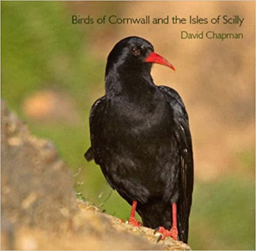 Birds of Cornwall and the Isles of Scilly (Pocket Cornwall)