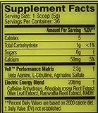 Neon-Sports-Volt-Pre-workout-Watermelon-36-Servings-180-Grams