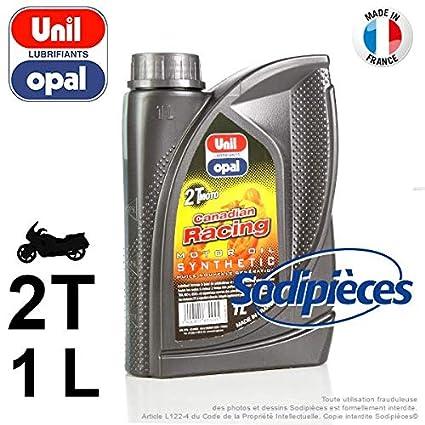 Aceite 100% sintético 2T: Amazon.es: Coche y moto