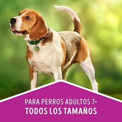 Dog Chow Comida para Perro Longevidad Senior Edad Madura Todos los Tamaños con Extralife 7.5 kg 8