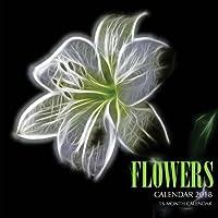 Flowers Calendar 2018: 16 Month Calendar