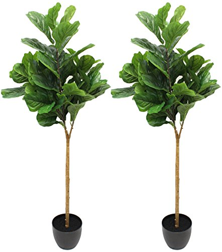 (2 Pack) 5 Foot Fiddle Leaf Fig Tree - Realistic Artificial Home Decor (2)