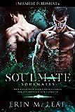 Soulmate (Soulmates Book 1)