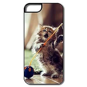 Design Lovely Playful Kitten Love IPhone 5 5s Skin For Her