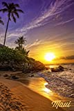Maui, Hawaii - Sunset and Palm (24x36 SIGNED Print Master Giclee Print w/ Certificate of Authenticity - Wall Decor Travel Poster)