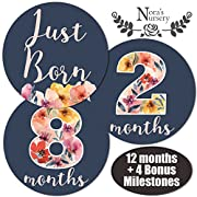 Newborn Baby Girl Dark Floral Monthly Stickers - Great Shower Registry Gift or Scrapbook Photo Keepsake