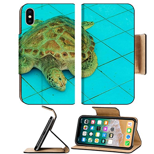 MSD Premium Apple iPhone X Flip Pu Leather Wallet Case IMAGE ID 20075898 Sea Turtle Sleeping in the Pond Aquaculture (Aquaculture Pond)