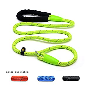 Wellbro Reflective Nylon Loop Slip Dog Leash, Pet Rope Slip Traning Lead Collar with Paded Handle, Durable and Convenient, Ideal for Medium and Large Dogs, 5.3ft Length (Green)