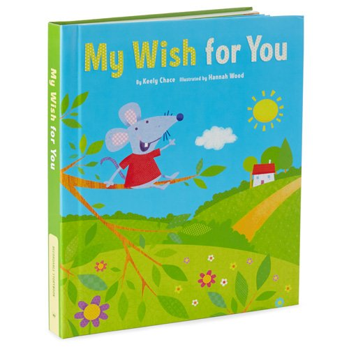 Hallmark KOB1095 My Wish For You Recordable Book