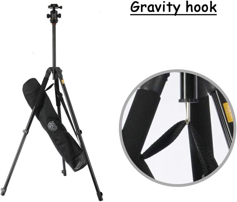 ACC Travel Tripod 360 Degree Fluid Drag Head and Quick Release Plate 5kg Load for DSLR Cameras Video 150cm Aluminum Tripod with Carry Bag