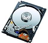Toshiba MK3276GSX 320 GB Internal Hard Drive (MK3276GSX)