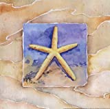 Starfish - Poster by Paul Brent (12x12)