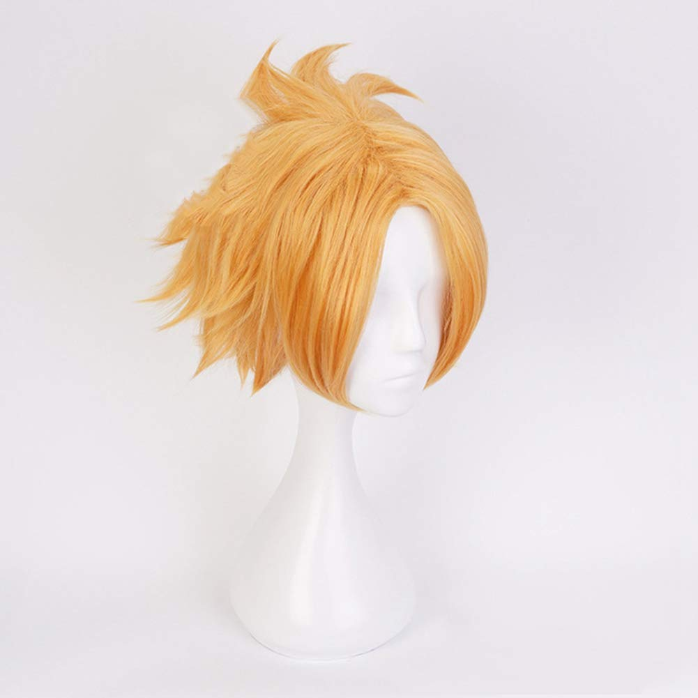 Katsuki Bakugou Bowinr Cosplay Wig for My Hero Academia Synthetic Hair Wigs for Anime-Fans Izuku Midoriya All Might Todoroki Shoto Todoroki Shoto