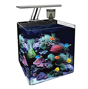 Ocean Free AT560A Nano Acuario Marino, Negro: Amazon.es: Productos para mascotas