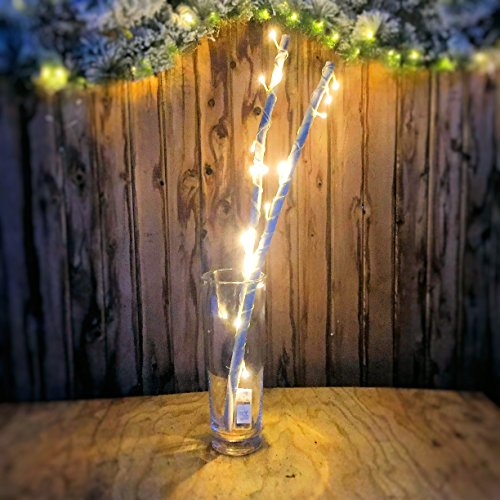 Nature Inspired Wire (The Inspired By Nature Set of 2 LED String Light Wrapped Branches, Over 2 1/2 Ft Tall, Natural Wood, Plastic Wrapped Metal Wire, 4 AA Batteries (2 for Each Battery)