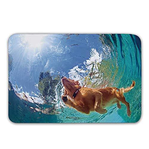 - Funny Non Slip Door Mat,Underwater Photo of Golden Labrador Retriever Puppy Swimming in Pool Happy Decorative Doormat for Front Door Indoor,31.5