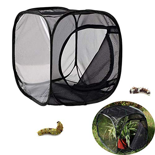 (TureLaugh Insect and Butterfly Habitat Cage Terrarium Collapsible Pop-up 12 x 12 x 12 inch for Kids Spring Play Fun Time Toy Tools (A))