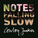 Notes Falling Slow (Box Set)