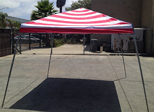World Famous Sports 10'x10′ Stars and Stripes Sun Canopy