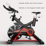 LJMG-Spin-Bike-Cyclette-Regolabile-Cyclette-Indoor-Cyclette-Silent-Drive-Drive-Cyclette-Addominale-Fitness-Cardio-Trainer-Cross-Trainer-Color-Orange-Size-119-49-118cm