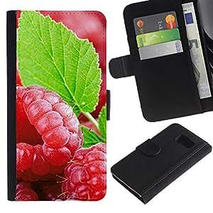 LASTONE PHONE CASE / Lujo Billetera de Cuero Caso del tirón Titular de la tarjeta Flip Carcasa Funda para Samsung Galaxy S6 SM-G920 / Fruit Fresh Mint